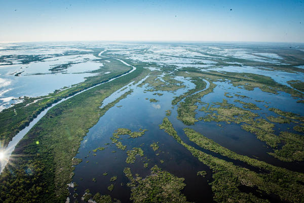Louisiana's coastal land loss is most evident from above, and will be hastened by increasing rates of sea level rise caused by climate change.