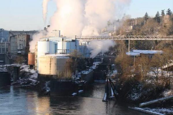 <p>A staple of West Linn's business community for 128 years, the West Linn Paper Company will shut it's doors after unexpected events led to a reduction in pulp supply, the company said.&nbsp;</p>
