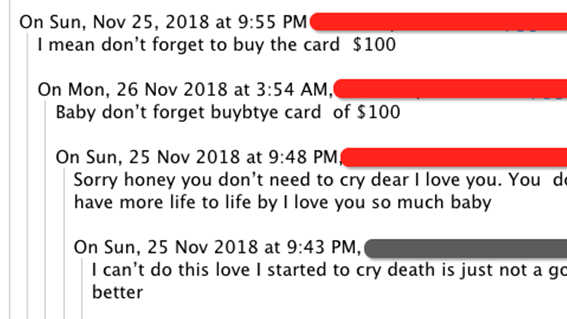 Intercepted emails between a scammer and a victim.