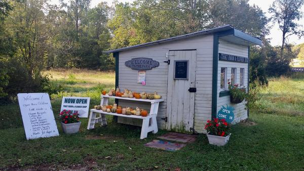 That Girl's Flowers and That Guy's Farm are located in  in Blanchester, just north of Cincinnati in Clinton County.