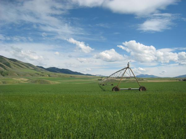 The Confederated Salish and Kootenai Tribes Water Compact narrowly passed the state Legislature in 2015 after more than a decade of negotiation. It settles water rights in and around the Flathead Reservation.