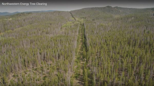 A screen capture from a NorthWestern Energy video shows a powerline corridor that must be cleared of hazard trees to help prevent wildfires.