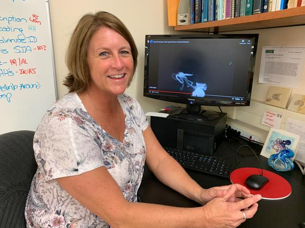 Heather Judkins, a marine biologist at USF St. Petersburg, is a cephalopod expert who helped identify the first giant squid seen in US waters