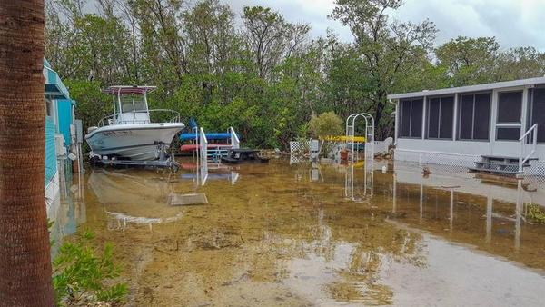 This is a king tide at the Key Largo Kampground & Marina in Key Largo. NANCY SNYDER