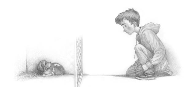 <em>The Dog Who Lost His Bark</em> is about a boy rescuing a dog and a dog rescuing a boy. Author Eoin Colfer says he loves it when parents tell him they read the book aloud to their kids at bedtime — but then sneak it away to find out what happens next.