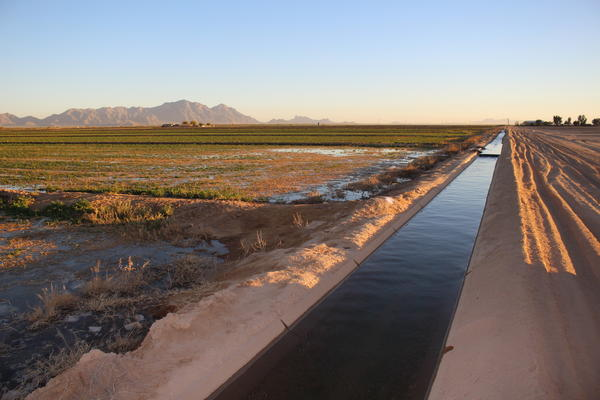 An irrigation canal carries Colorado River water to cropfields in central Arizona.