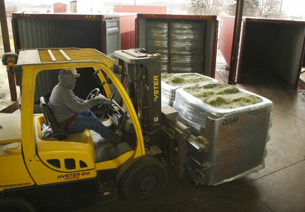 Workers load bales of hay at a facility in eastern Washington in March 2016. Hay is Washington's largest containerized export by volume.