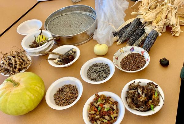 Along with learning how to collect and save seeds, part of Beth Bridgman's class included collecting the oral history of seeds.