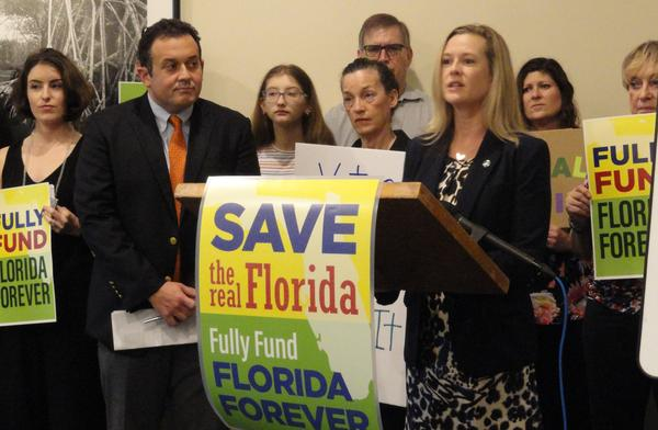 Haley Burger, Administrator of Florida Conservation Voters, far left, and State Rep. Ben Diamond look on as Lindsay Cross of Florida Conservation Voters speaks in St. Petersburg.