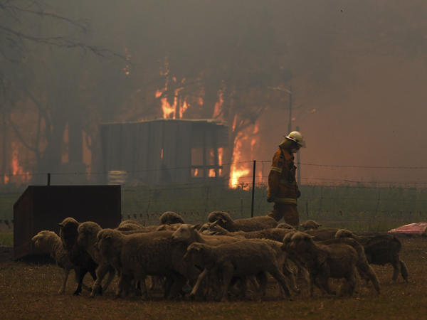 Rural Fire Service officers protect property from the Green Wattle Creek Fire along the Old Hume Highway near the town of Tahmoor in New South Wales.
