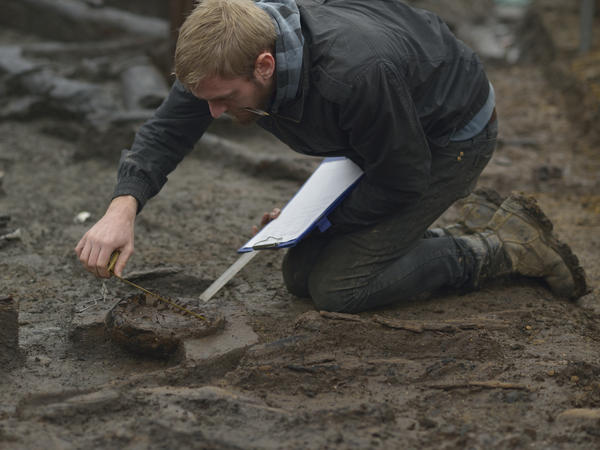 Wood specialist Mike Bamforth examines the base of a Bronze Age wooden bucket at the excavation site.