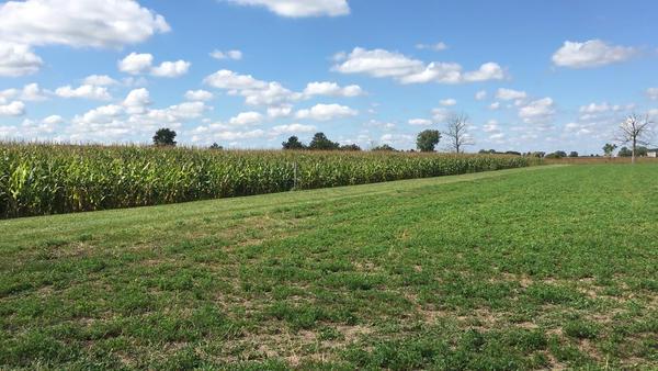 A northwest Ohio farm