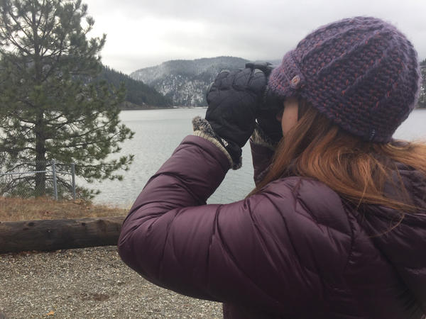 BLM Wildlife Biologist Carrie Hugo Peers through binoculars. For the last eight years she's been in charge of counting the migrating  Bald Eagles that stop over at Lake Coeur D'Alene in Idaho's panhandle.