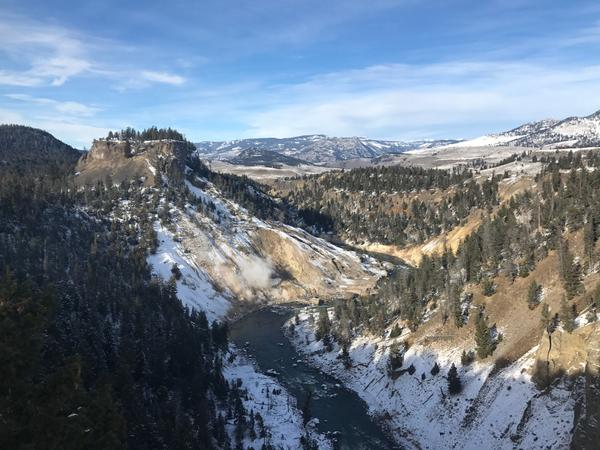 Near Tower Junction at Yellowstone National Park.