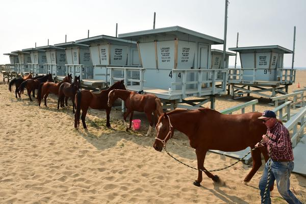 Horses are tied up at lifeguard stations on Zuma Beach, brought there by their owners to escape the Woolsey Fire, in Malibu.