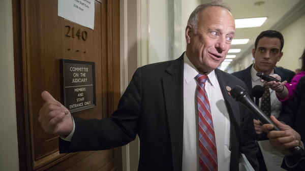 Rep. Steve King, R-Iowa, a member of the House Judiciary Committee, is under fire again for making controversial remarks.