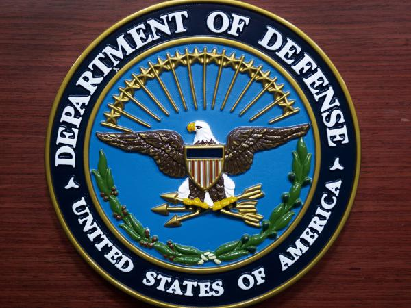 A 2017 report on military families released Thursday reveals that a huge swath of more than 600,000 spouses of active duty and Reserve servicemembers faced a variety of challenges due to their spouses' service.