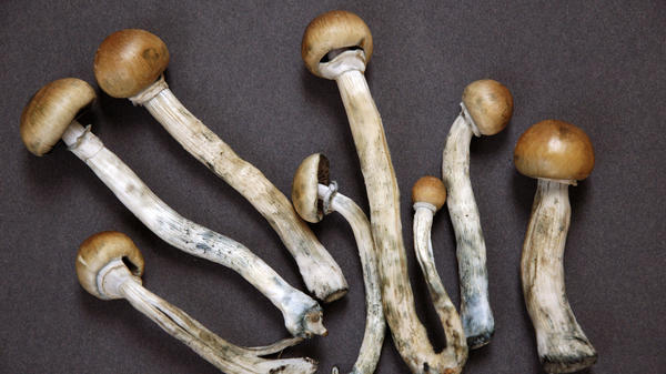 The director of the Denver campaign told NPR that the results from the vote<strong> </strong>shows that society's perception of psychedelics has changed.