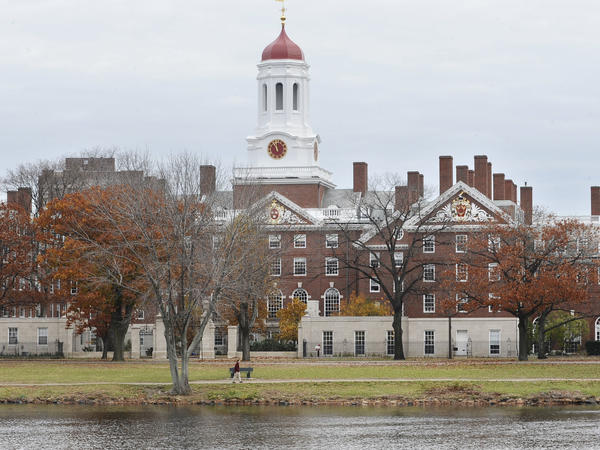 """A file photo shows the campus of Harvard University in Cambridge, Mass. Dr. Anthony Rostain, co-author of <em>The Stressed Years of Their Lives, </em>says today's college students are experiencing an """"inordinate amount of anxiety."""""""