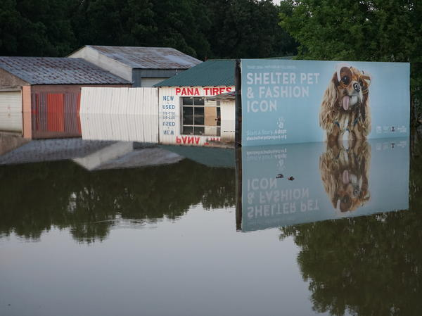 Businesses are underwater along the Arkansas River, including near Dardanelle. A levee broke just across the river overnight on Thursday.