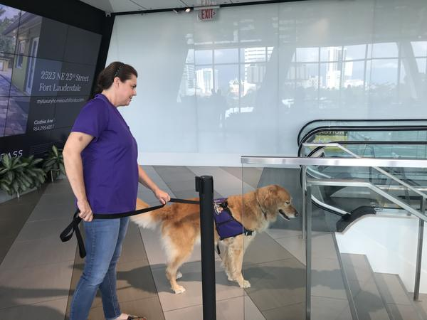Therapy dog Maggie, and her owner Ellen Springs, wait for Brightline passengers to come up the escalator on Tuesday evening.