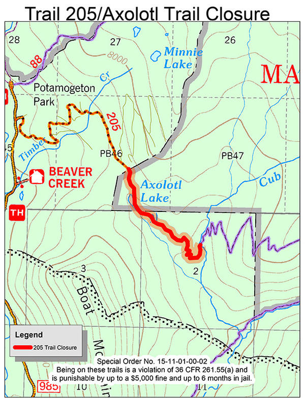 Custer Gallatin National Forest announced Monday an emergency closure for a one mile stretch of Axolotl trail while the investigation into the bear death continues.