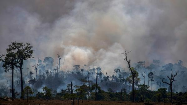Smoke rises from the fires ravaging the Amazon basin in August. On Monday, Brazilian authorities released data revealing the highest rate of deforestation in the Amazon rainforest in a decade — partly due to a recent surge in wildfires throughout the region.