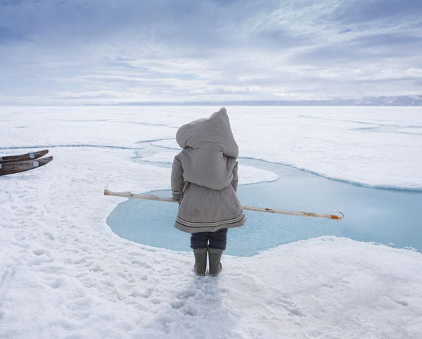 Carrying her baby in a pouch on her back, Susan Enoogoo, 39, hunts for ringed seal on the sea ice near Arctic Bay, Nunavut. Inuit mothers often carry their baby when hunting. If a seal surfaces, Enoogoo tries to snag it with the hook she's holding and drag it out of the water.