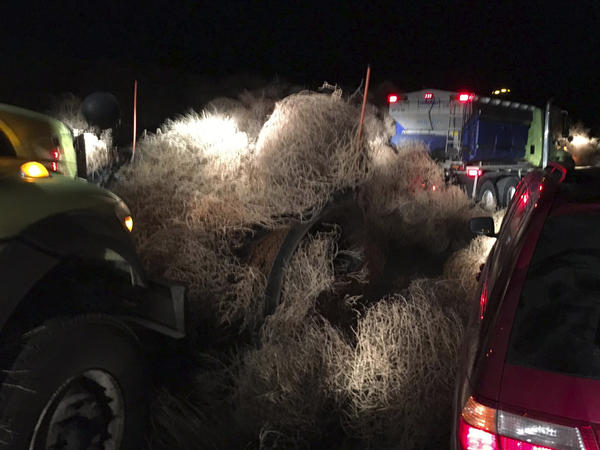 The Washington State Department of Transportation used snowplows Tuesday evening to remove a pile of tumbleweeds along State Route 240 near Richland.