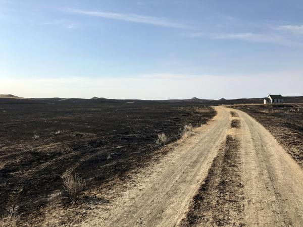 The 2017 Lodgepole Complex of fires in eastern Montana was attributed to a severe drought exacerbated, in part, by climate change.