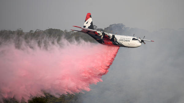 A New South Wales Rural Fire Service large air tanker drops fire retardant on the Morton Fire burning in bushland close to homes at Penrose, south of Sydney, on Friday.