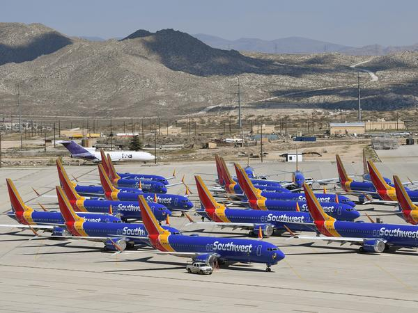 Boeing 737 Max planes are parked on the tarmac after the jets were grounded because of two crashes.