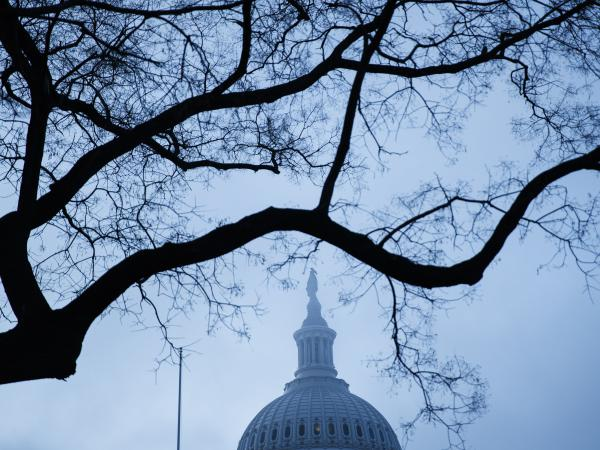 A light veil of fog shrouded the Capitol dome on Wednesday as the House was set to vote on transmitting articles of impeachment to the Senate.