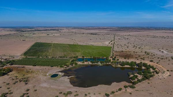 Part of the El Milagro rancho owned by a former governor of Aguascalientes state in Mexico. The property uses free water from agricultural water concessions granted by the government.