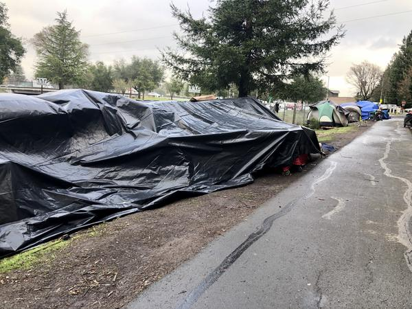 In Sonoma County, Calif., officials are struggling to address a homeless encampment with roughly 200 residents.