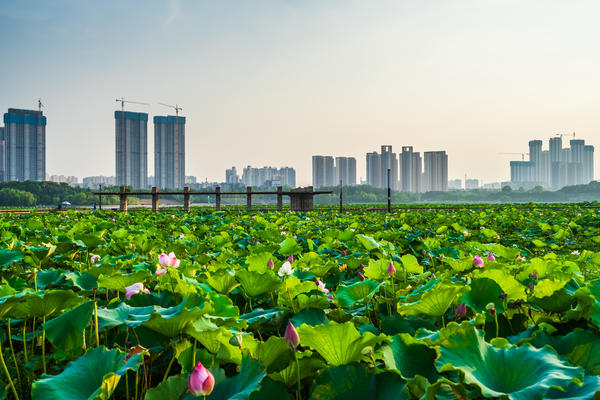 The city of Wuhan, epicenter of the current coronavirus outbreak.