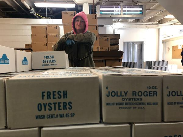Amy Skillings of Oysterville, Washington, wheels the day's shucked oysters into a large cooler to await pickup. The oysters will be flown quickly across the country and to China.
