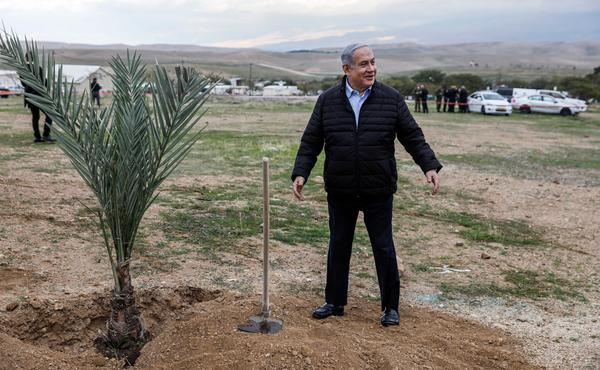 Israeli Prime Minister Benjamin Netanyahu plants a tree during a commemoration of the Jewish holiday of Tu BiShvat (New Year for Trees), in the Israeli settlement of Mevo'ot Yericho near the Palestinian city of Jericho in the Jordan Valley in the occupied West Bank.
