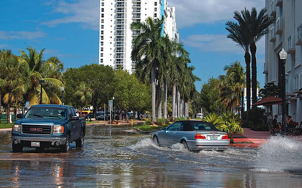 The new sea level projections are a confirmation of what many in South Florida have seen first hand during king tides.