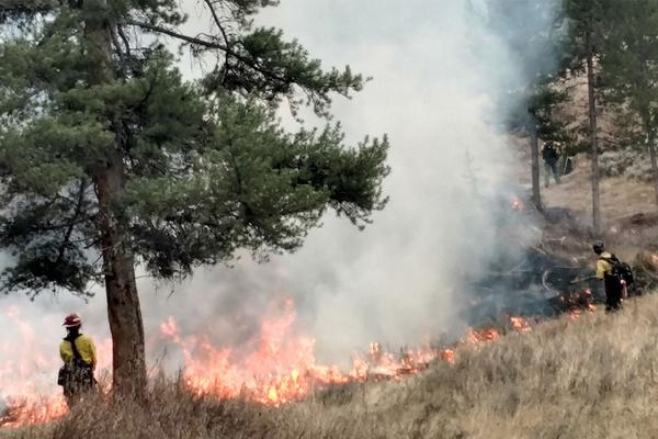 A prescribed burn in the Porcupine area of Custer Gallatin National Forest in 2018.