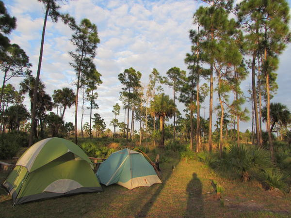 The Florida Department of Environmental Protection state parks remain open for day use, but overnight camping, events, activities, special event reservations, pavilion rents, and more have been canceled.