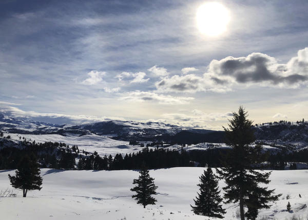 Yellowstone National Park's Lamar Valley near Mammoth, Wyo., on Tuesday. The National Park Service announced that Yellowstone and Grand Teton National Parks would be closed until further notice, and no visitor access will be permitted to either park.