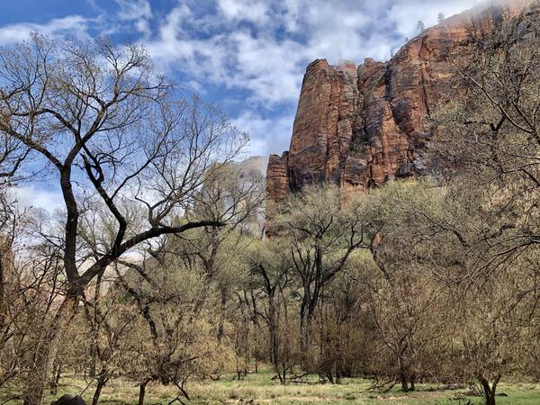 Zion National Park and other crown jewels of the country's public lands system offer a respite during the COVID-19 pandemic. But getting there can lead to new cases of the novel coronavirus in rural towns that are unprepared to handle a surge in patients.