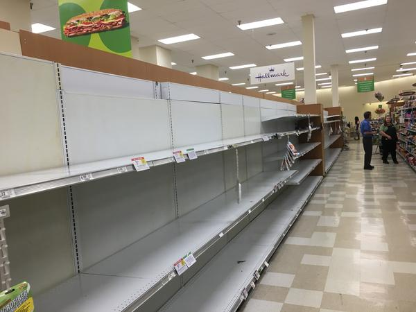 Empty shelves, like these seen in a Tampa Bay area Publix in mid-March, have been a common occurence during the COVID-19 pandemic.