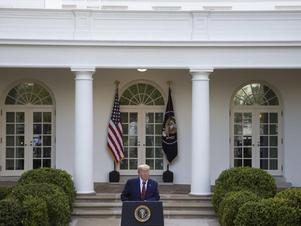 President Trump speaks in the White House's Rose Garden on Sunday.