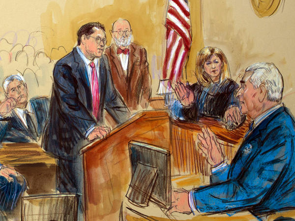 Roger Stone spoke from the witness stand as prosecution attorney Jonathan Kravis, standing left, Stone's attorney Bruce Rogow, third from right, and Judge Amy Berman Jackson listened.