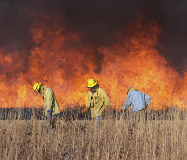 Volunteer crews at Konza Prairie Biological Station have a careful system for burning exactly the areas intended.