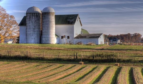 The COVID-19 shutdown has posed some unique challenges for Michigan farmers.