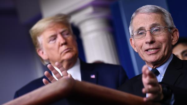 Dr. Anthony Fauci, a member of President Trump's coronavirus task force, directs the National Institute of Allergy and Infectious Diseases, which had convened the panel of experts.
