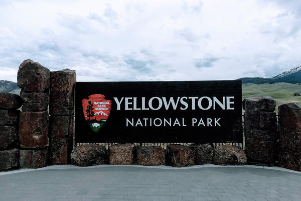 Yellowstone National Park is gathering input from gateway communities, governors and federal agencies to develop a gradual reopening plan.